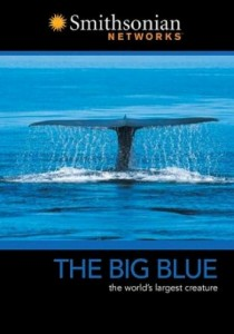 Big Blue, The – DVD Cover