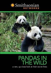 Pandas in the Wild – DVD Cover