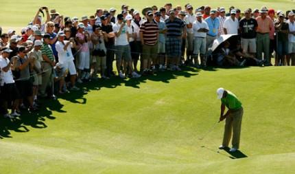 Tiger – Australian Open
